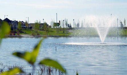 Ambleside is one of Edmonton's newest communities and is located in the area ...